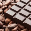 Cocoa Beans 8