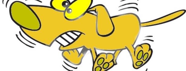 Wag The Dog1